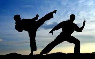 Бесконтактная борьба название. Виды боевых искусств