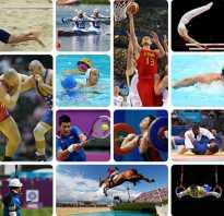 Интересные факты о спорте для школьников. Самые интересные спортивные факты
