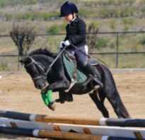 Конный спорт для детей: польза и вред, в каком возрасте лучше начинать? Чем полезен конный спорт и верховая езда.