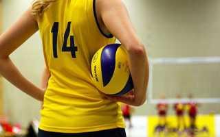 Волейбол упражнения для начинающих. Как научиться хорошо играть в волейбол