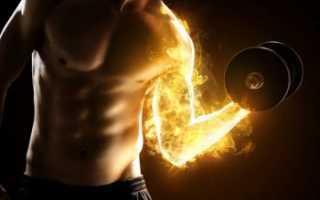 Как выгнать молочную кислоту из мышц после нагрузки. Молочная кислота в мышцах как вывести народными средствами