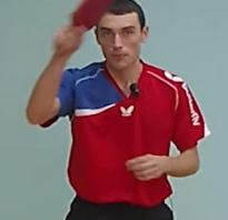 Удар справа настольный теннис. Техника и правила игры настольного тенниса: советы начинающим