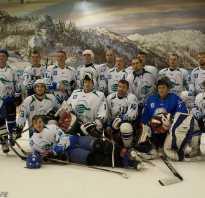 Уфимская любительская хоккейная лига завершает сезон. Управление по физической культуре и спорту г.Уфа Ссылки Уфимская любительская хоккейная лига 40