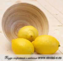 Сжигает ли лимон калории. Правда, что лимон сжигает жир? Спросим у диетологов