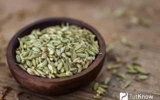 Ромашковый чай польза и вред для похудения. Противопоказания к употреблению фенхеля