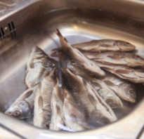 Как засолить маленькую речную рыбу и засушить. Как быстро высушить рыбу в домашних условиях
