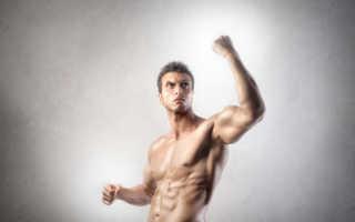 Изотермические упражнения. Изометрические упражнения: особенности, эффективность, знаменитые теории