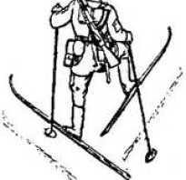 Правильный спуск с горы на лыжах. Способы подъема и спуска на лыжах