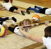 Реферат на тему гимнастика по физкультуре. Виды гимнастики