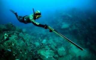 Азы подводной охоты для начинающих. Подводная охота