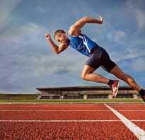 Что полезнее для организма: бег, плавание или велосипед? Бег или плавание.