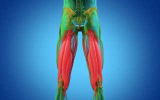 Как правильно растянуть мышцы под коленями в домашних условиях. Задней крестообразной и внутренней боковой
