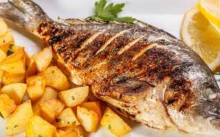 Сайда что за рыба морская или речная. Сайда: что это за рыба? Сайда тушенная с горчицей