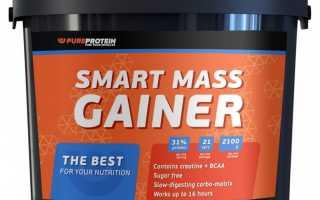 Гейнер: вред и польза для организма. Для чего нужен Гейнер и насколько он полезен или вреден для здоровья