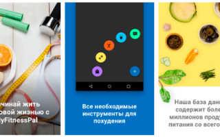 Лучшее приложение счетчик калорий для айфона. Топ лучших бесплатных приложений для подсчета калорий на Android и iOS
