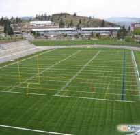 Разница между регби и американским футболом. Чем отличается регби от американского футбола