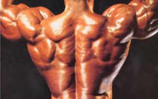 Как укрепить внутренние мышцы спины. Как укрепить поясницу на турнике