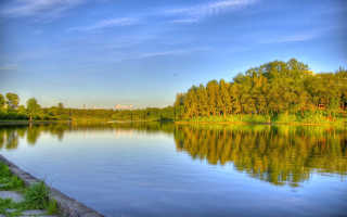 Такие разные озера и пруды. Рыбалка в Подмосковье — бесплатные водоемы