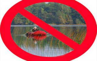 Можно ли рыбачить в апреле на спиннинг. Ловим на поплавочную удочку в апреле