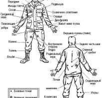 Самые опасные точки на теле человека. Болевые точки на теле человека: знать, но не использовать (1 фото)