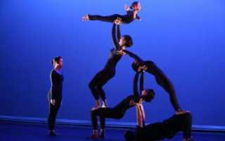Гимнастика – что это такое, виды (классификация), особенности, техника, цели. Организация учебных акробатических занятий в школе