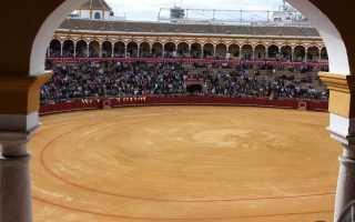 Что такое коррида? Все о корриде в Испании. Игра на грани жизни и смерти или где всё ещё можно посмотреть корриду в Испании