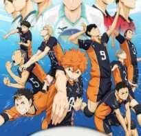 Персонажи аниме парящая команда. Тору Окава – главный персонаж аниме «Волейбол