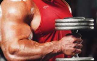 Как правильно выполнять упражнение молот. Как правильно выполнять упражнение «молот»