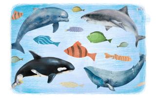 Детские стихи про рыбок.