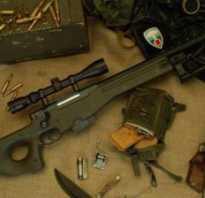 Размеры авп. Снайперская винтовка Awp