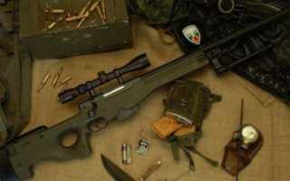 Винтовка AWP: фото, характеристики. Оружейка