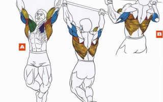 Как совместить отжимания и подтягивания. Упражнения для роста мышц