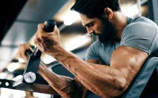 Какие мышцы у мужчин больше всего нравятся женщинам. Какие мускулы у мужчин нравятся женщинам больше всего? Вот что показал опрос