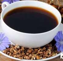 Цикорий с медом для похудения. Что такое цикорий? Препараты для похудения с цикорием