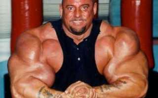Самые большие мышцы в мире. Кому принадлежит самый большой бицепс в мире