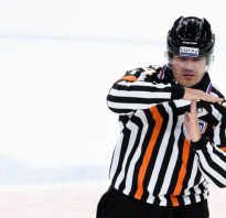 Сколько длится хоккей с шайбой. Сколько в хоккее периодов и их дительность