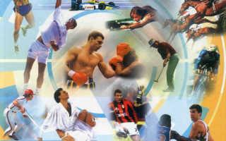 Как отличить профессиональный спорт от любительского. Профессиональный спорт и любительская дрессировка — в чем разница