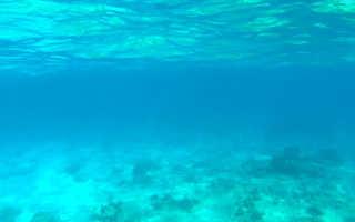 Полезные свойства морской воды для здоровья человека. Морская вода: какую она несет пользу