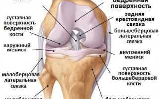 Комплекс упражнений для коленных суставов и мышц – восстанавливаем и укрепляем.