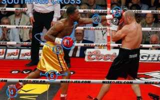 Как бить кросс в боксе. Прямой длинный удар (кросс и джолт)