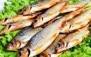 Вяленая плотва — рецепт от астраханских рыбаков. Вяленая плотва