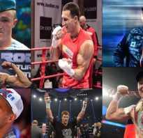 Российские профессиональные боксеры. Все российские чемпионы мира среди профессионалов