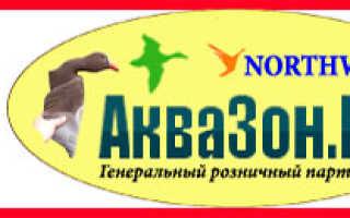 Стрельба из лука по рыбе. BOWFISHING в России: Что нужно для боуфишинга или охоты на рыбу с луком