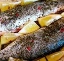 Сибас белая или красная рыба. Сибас в духовке