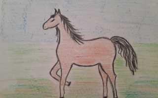 Как нарисовать лошадь поэтапно. Мастер-класс «Рисование лошади поэтапно для детей подготовительной группы