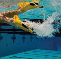 Как правильно выбрать ласты для плавания. Как подобрать ласты для плавания и их размер