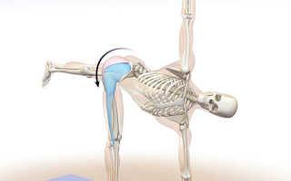 Растяжка мышечной фасции как делать. Почему так важно заботиться о здоровье фасции