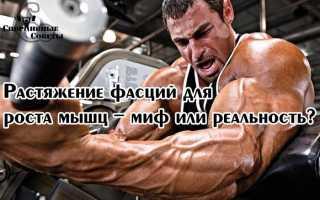 Растягивание фасции широчайших мышц спины. Упражнения на растяжку, или расти мышца большая и очень большая