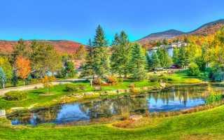Чем пруд отличается от озера: особенности и отличия.