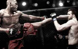 Рейтинг боевых искусств по эффективности. Боевые искусства добавить свою цену в базу комментарий